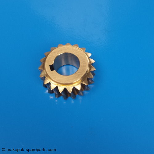 Worm gear wheel