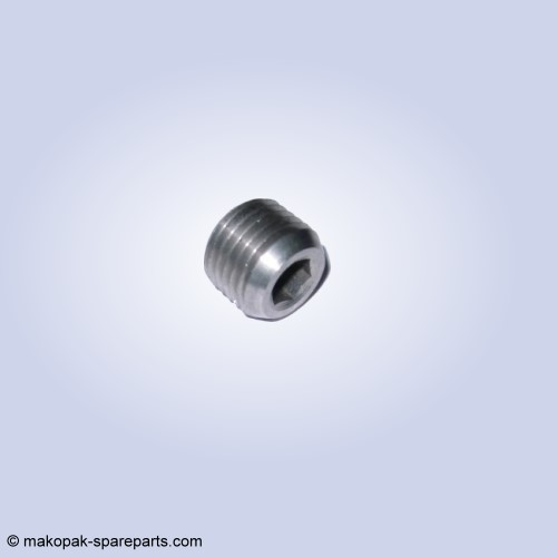 Socket head pipe plug